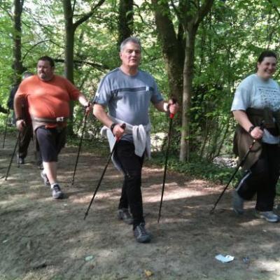 Exercices lors d'une séance de marche nordique